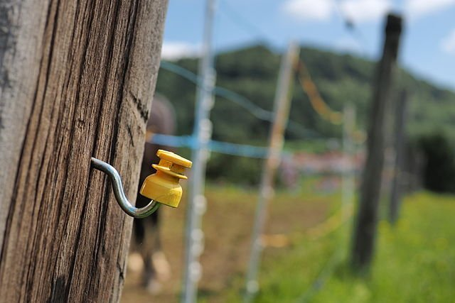 West Warwick Electric Fence