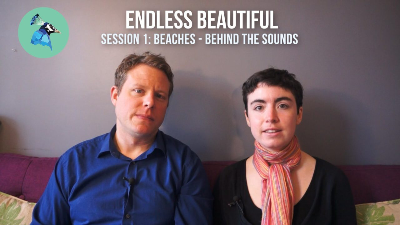 Behind the Sounds - Session 1: Beaches